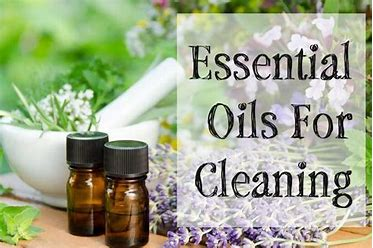 Essential oils forcleaning