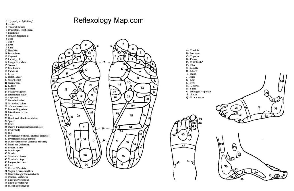 Foot Chart – Free Printout